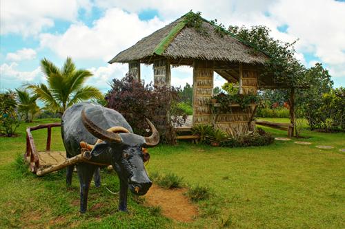 https://tourism.davaocity.gov.ph/wp-content/uploads/2018/10/manmade-11-1.jpg